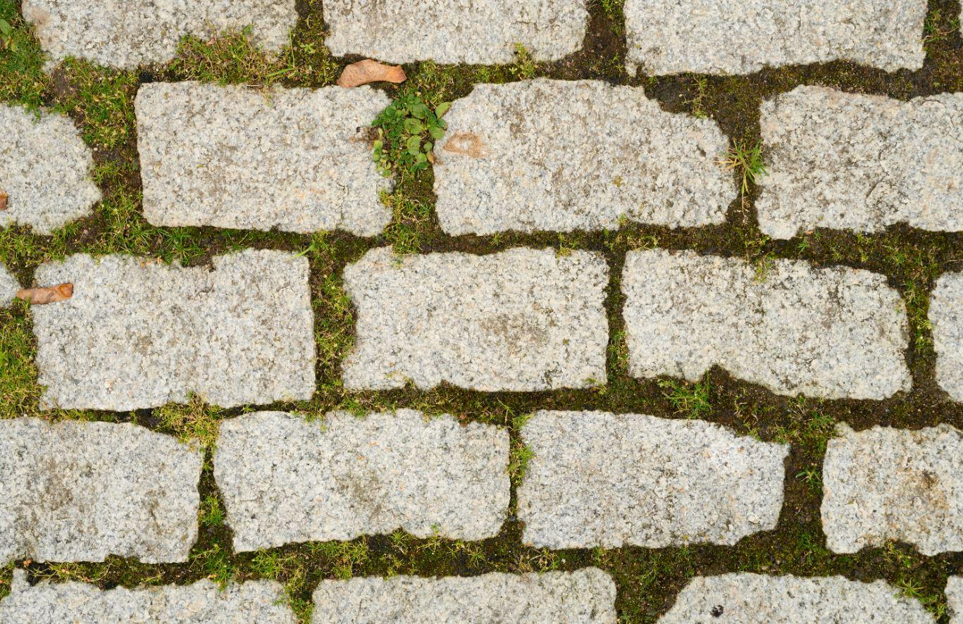Eliminar moho de superficies de piedra y baldosas